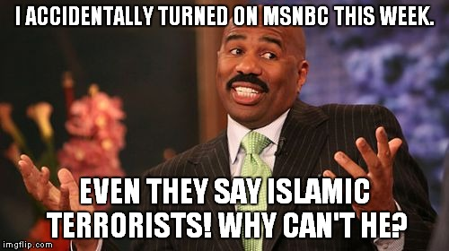 Steve Harvey Meme | I ACCIDENTALLY TURNED ON MSNBC THIS WEEK. EVEN THEY SAY ISLAMIC TERRORISTS! WHY CAN'T HE? | image tagged in memes,steve harvey | made w/ Imgflip meme maker
