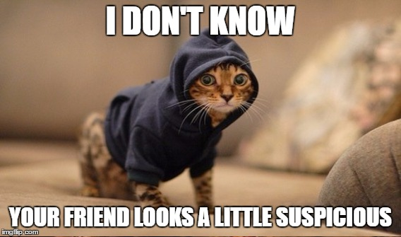 I DON'T KNOW YOUR FRIEND LOOKS A LITTLE SUSPICIOUS | made w/ Imgflip meme maker