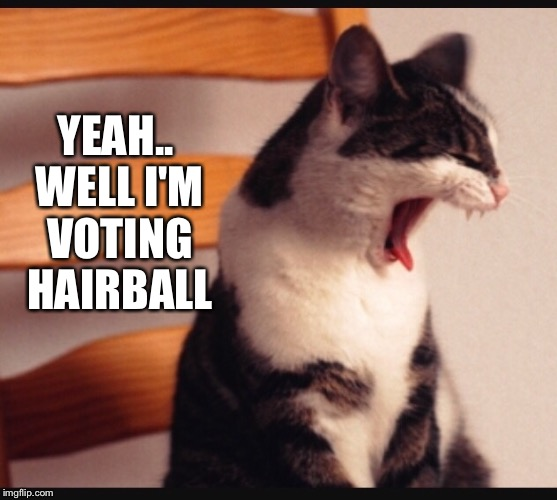 YEAH.. WELL I'M VOTING HAIRBALL | made w/ Imgflip meme maker