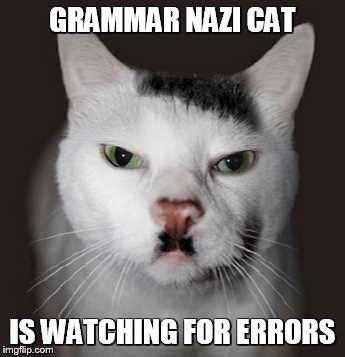 Grammar Nazi cat - Imgflip