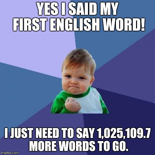 Success Kid Meme |  YES I SAID MY FIRST ENGLISH WORD! I JUST NEED TO SAY 1,025,109.7 MORE WORDS TO GO. | image tagged in memes,success kid | made w/ Imgflip meme maker