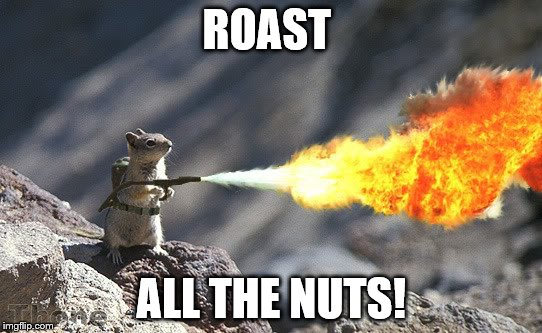 Flame War Squirrel | ROAST ALL THE NUTS! | image tagged in flame war squirrel | made w/ Imgflip meme maker