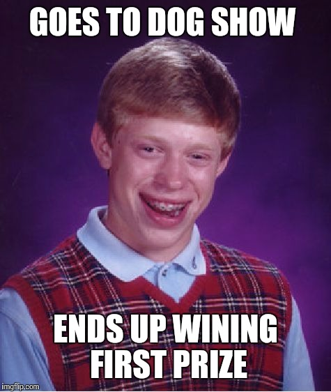 Bad luck Brian visits dog show  | GOES TO DOG SHOW ENDS UP WINING FIRST PRIZE | image tagged in memes,bad luck brian | made w/ Imgflip meme maker