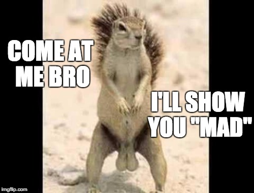 "COME AT ME BRO I'LL SHOW YOU ""MAD"" 