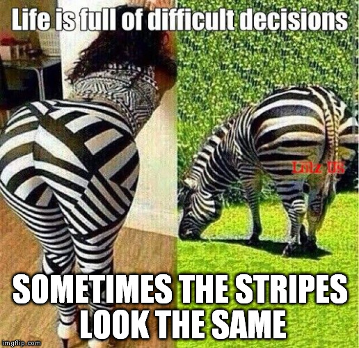SOMETIMES THE STRIPES LOOK THE SAME | made w/ Imgflip meme maker