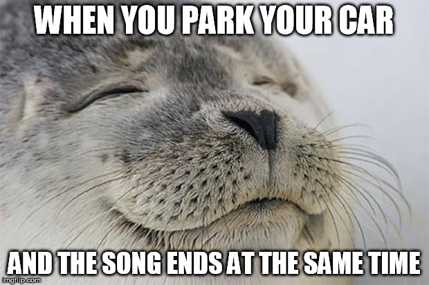 Satisfied Seal Meme | WHEN YOU PARK YOUR CAR AND THE SONG ENDS AT THE SAME TIME | image tagged in memes,satisfied seal | made w/ Imgflip meme maker