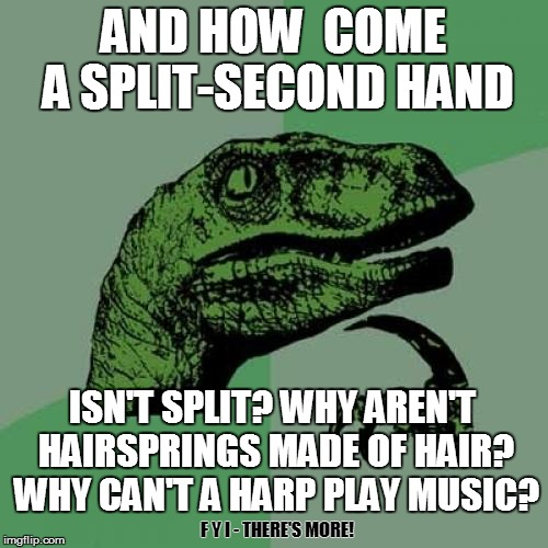Philosoraptor Meme | AND HOW  COME A SPLIT-SECOND HAND ISN'T SPLIT? WHY AREN'T HAIRSPRINGS MADE OF HAIR? WHY CAN'T A HARP PLAY MUSIC? F Y I - THERE'S MORE! | image tagged in memes,philosoraptor | made w/ Imgflip meme maker