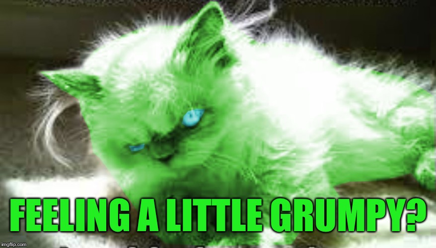 mad raycat | FEELING A LITTLE GRUMPY? | image tagged in mad raycat | made w/ Imgflip meme maker