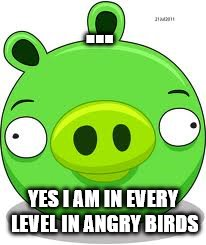 Angry Birds Pig | ... YES I AM IN EVERY LEVEL IN ANGRY BIRDS | image tagged in memes,angry birds pig | made w/ Imgflip meme maker
