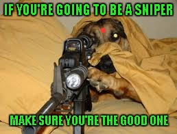 In video games, I like to be a sniper...but i get killed a lot so I guess I'm not a very good one. | IF YOU'RE GOING TO BE A SNIPER MAKE SURE YOU'RE THE GOOD ONE | image tagged in memes,dog sniper,don't get sniped,sniper,funny,funny dogs | made w/ Imgflip meme maker