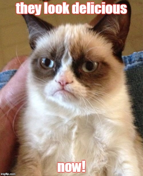 Grumpy Cat Meme | they look delicious now! | image tagged in memes,grumpy cat | made w/ Imgflip meme maker