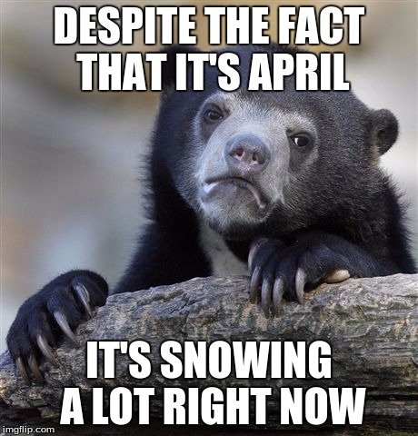 Living in Vermont is very strange, indeed... | DESPITE THE FACT THAT IT'S APRIL IT'S SNOWING A LOT RIGHT NOW | image tagged in memes,confession bear | made w/ Imgflip meme maker