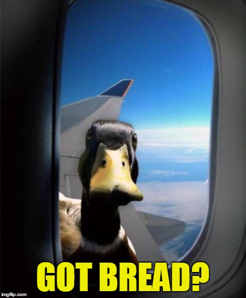 GOT BREAD? | made w/ Imgflip meme maker