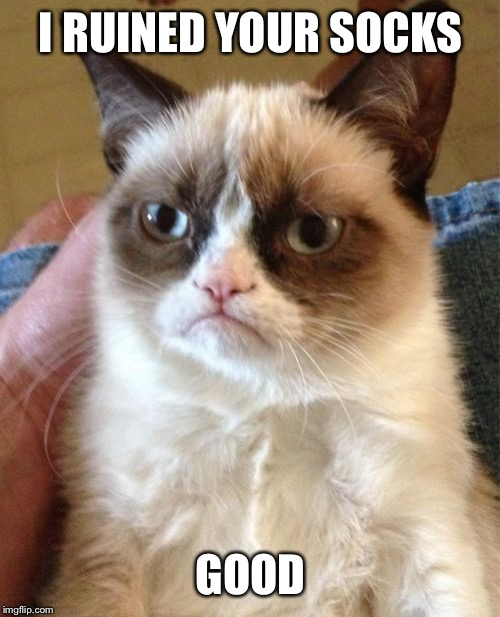Grumpy Cat Meme | I RUINED YOUR SOCKS GOOD | image tagged in memes,grumpy cat | made w/ Imgflip meme maker