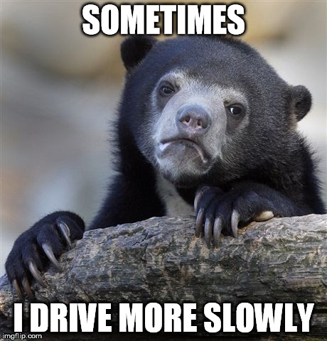 Confession Bear Meme | SOMETIMES I DRIVE MORE SLOWLY | image tagged in memes,confession bear | made w/ Imgflip meme maker