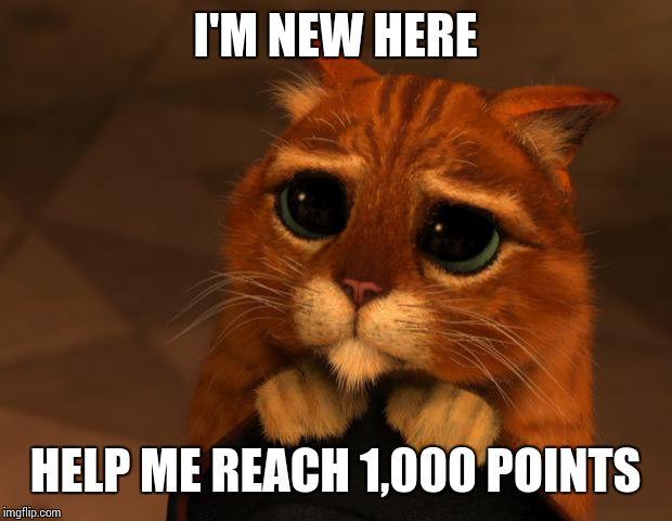11y7mq puss in boots eyes meme generator imgflip,Eyes Meme