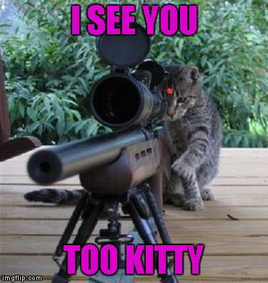 I SEE YOU TOO KITTY | made w/ Imgflip meme maker
