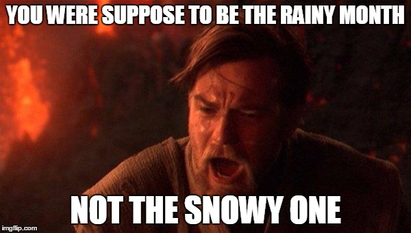 You Were The Chosen One (Star Wars) |  YOU WERE SUPPOSE TO BE THE RAINY MONTH; NOT THE SNOWY ONE | image tagged in memes,you were the chosen one star wars | made w/ Imgflip meme maker
