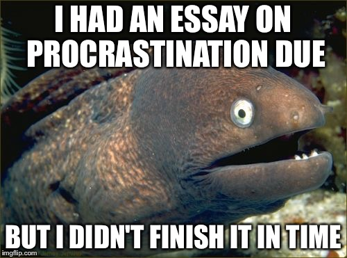 essays on procrastination When we fail to achieve our goals, procrastination is often the culprit but how exactly is procrastination to be understood it has been described as imprudent, irrational, inconsistent, and even immoral, but there has been no sustained philosophical debate concerning the topic.