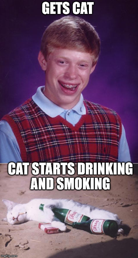 Bad luck Brian gets cat  | GETS CAT CAT STARTS DRINKING AND SMOKING | image tagged in bad luck brian,cat,drinking,smoking | made w/ Imgflip meme maker