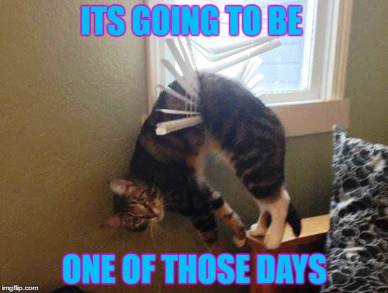 Bad Day Meme Funny : Rough day imgflip