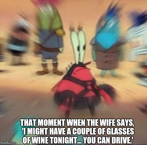 THAT MOMENT WHEN THE WIFE SAYS, 'I MIGHT HAVE A COUPLE OF GLASSES OF WINE TONIGHT... YOU CAN DRIVE.' | image tagged in that moment when | made w/ Imgflip meme maker
