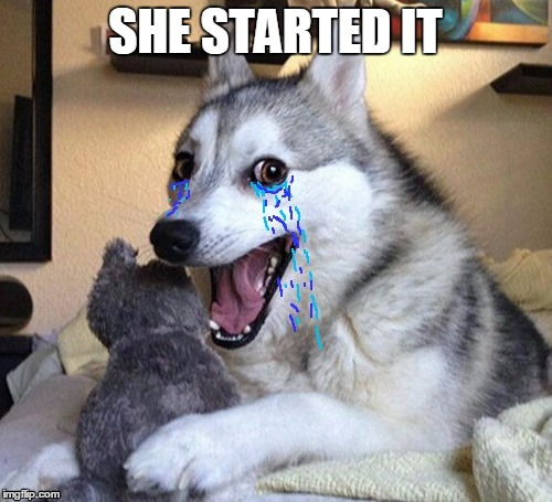SHE STARTED IT | made w/ Imgflip meme maker