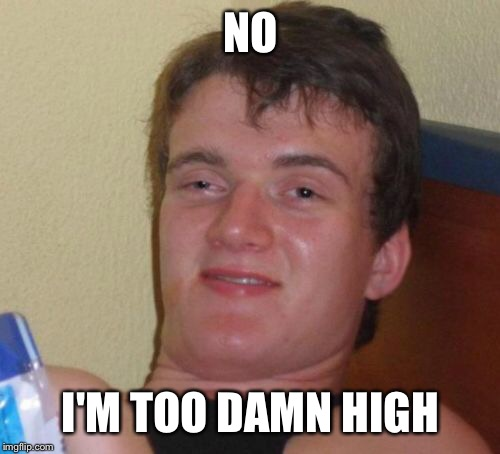 10 Guy Meme | NO I'M TOO DAMN HIGH | image tagged in memes,10 guy | made w/ Imgflip meme maker