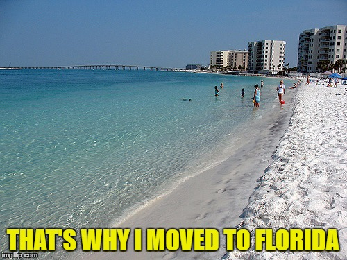 THAT'S WHY I MOVED TO FLORIDA | made w/ Imgflip meme maker