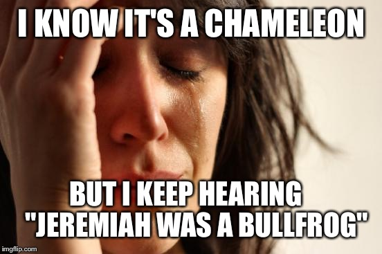 "First World Problems Meme | I KNOW IT'S A CHAMELEON BUT I KEEP HEARING    ""JEREMIAH WAS A BULLFROG"" 