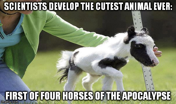 And rainbows followed with him... | SCIENTISTS DEVELOP THE CUTEST ANIMAL EVER: FIRST OF FOUR HORSES OF THE APOCALYPSE | image tagged in memes,four horsemen of the apocalypse,cute animals | made w/ Imgflip meme maker