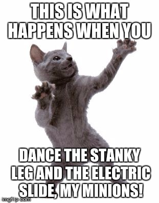 Stanky Leg and Electric Dance Effects! | THIS IS WHAT HAPPENS WHEN YOU DANCE THE STANKY LEG AND THE ELECTRIC SLIDE, MY MINIONS! | image tagged in happy dance cat | made w/ Imgflip meme maker