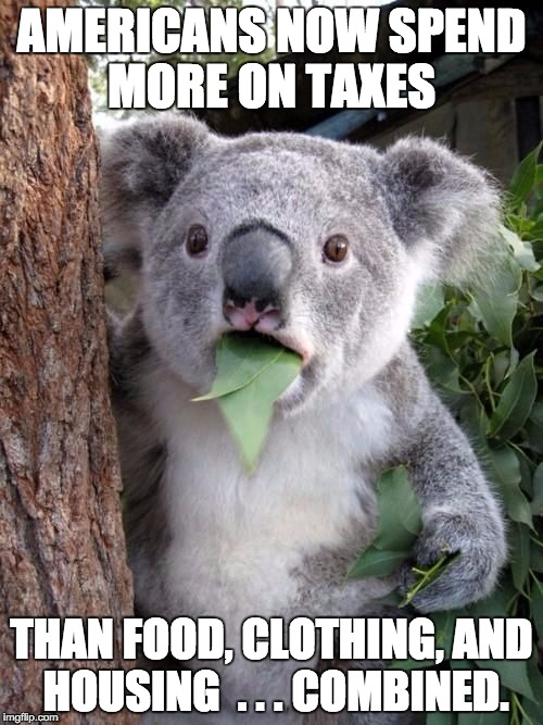 Americans will pay $5 trillion in federal. state & local taxes vs $4 trillion on necessities. | AMERICANS NOW SPEND MORE ON TAXES THAN FOOD, CLOTHING, AND HOUSING  . . . COMBINED. | image tagged in wtf koala | made w/ Imgflip meme maker