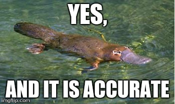 Platypus by Strongly Opinionated Platypus | YES, AND IT IS ACCURATE | image tagged in platypus by strongly opinionated platypus | made w/ Imgflip meme maker
