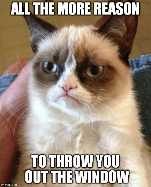 Grumpy Cat Meme | ALL THE MORE REASON TO THROW YOU OUT THE WINDOW | image tagged in memes,grumpy cat | made w/ Imgflip meme maker