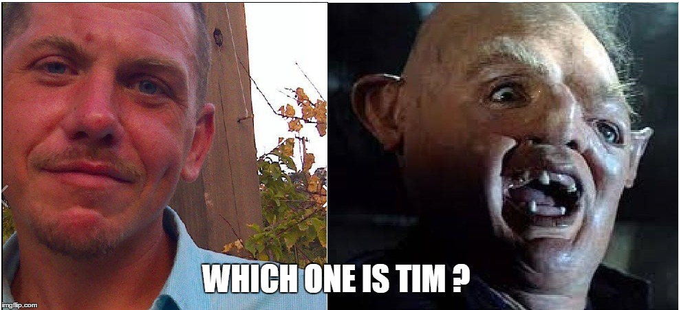 which one ?  | WHICH ONE IS TIM ? | image tagged in timmy,hey you guys,full retard | made w/ Imgflip meme maker