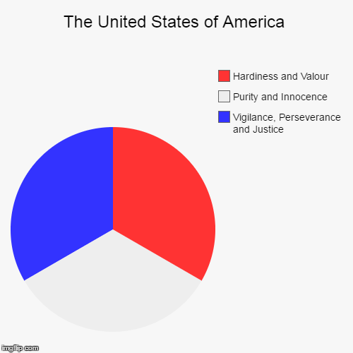 America... F YEAH! | The United States of America | Vigilance, Perseverance and Justice, Purity and Innocence, Hardiness and Valour | image tagged in funny,pie charts,america,united states,freedom,american flag | made w/ Imgflip chart maker