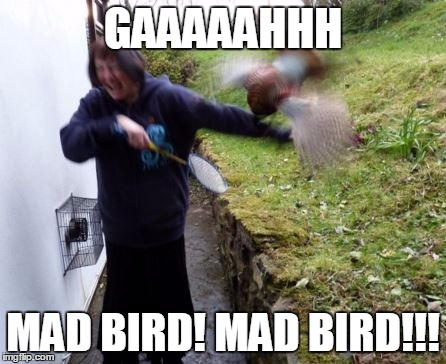 GAAAAAHHH MAD BIRD! MAD BIRD!!! | made w/ Imgflip meme maker