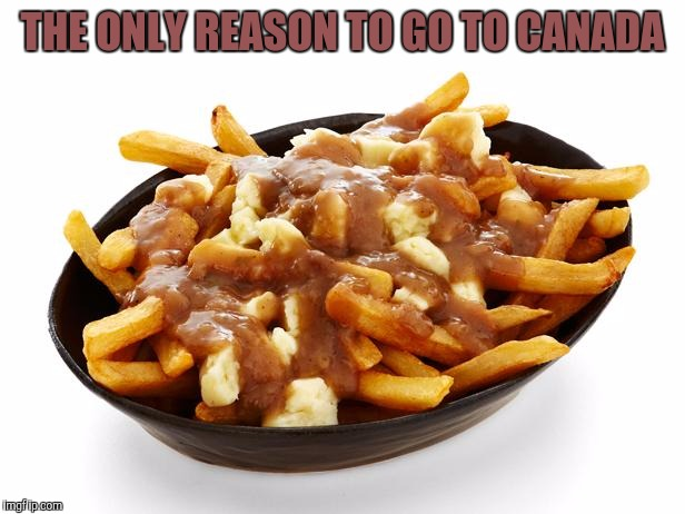 THE ONLY REASON TO GO TO CANADA | image tagged in poutine | made w/ Imgflip meme maker