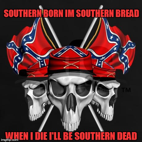 Haritage not hate | SOUTHERN BORN IM SOUTHERN BREAD WHEN I DIE I'LL BE SOUTHERN DEAD | image tagged in rebel flag,rebel flag meme,skulls,rebels,the south,southern meme | made w/ Imgflip meme maker