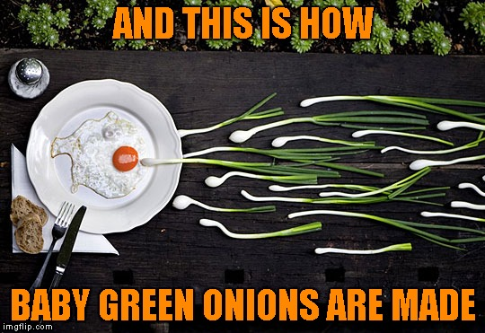 """Onion Conception"" 