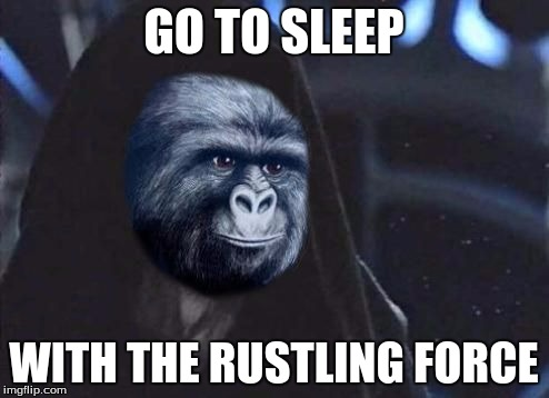 Emperor Rustling | GO TO SLEEP WITH THE RUSTLING FORCE | image tagged in emperor rustling | made w/ Imgflip meme maker