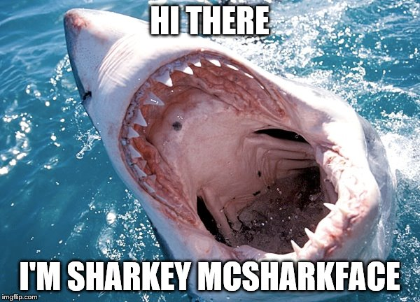 HI THERE I'M SHARKEY MCSHARKFACE | made w/ Imgflip meme maker