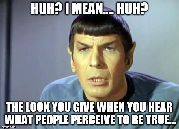 Disbelieving Spock | HUH? I MEAN.... HUH? THE LOOK YOU GIVE WHEN YOU HEAR WHAT PEOPLE PERCEIVE TO BE TRUE... | image tagged in disbelieving spock | made w/ Imgflip meme maker