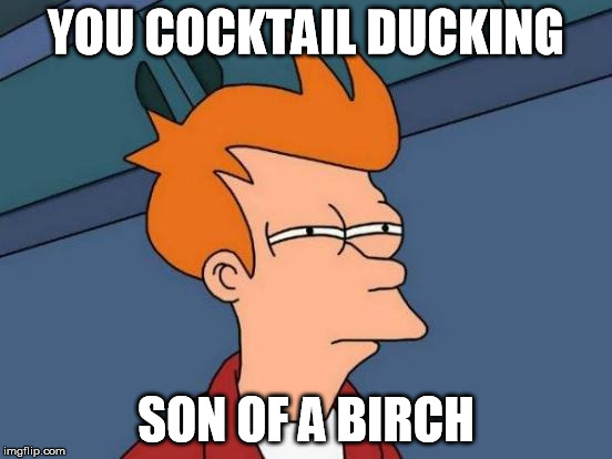 Futurama Fry Meme | YOU COCKTAIL DUCKING SON OF A BIRCH | image tagged in memes,futurama fry | made w/ Imgflip meme maker
