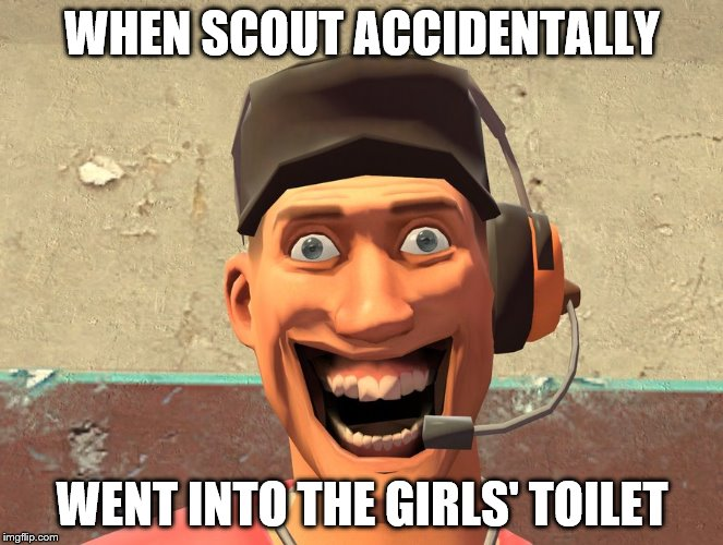 WTF2 |  WHEN SCOUT ACCIDENTALLY; WENT INTO THE GIRLS' TOILET | image tagged in wtf2 | made w/ Imgflip meme maker
