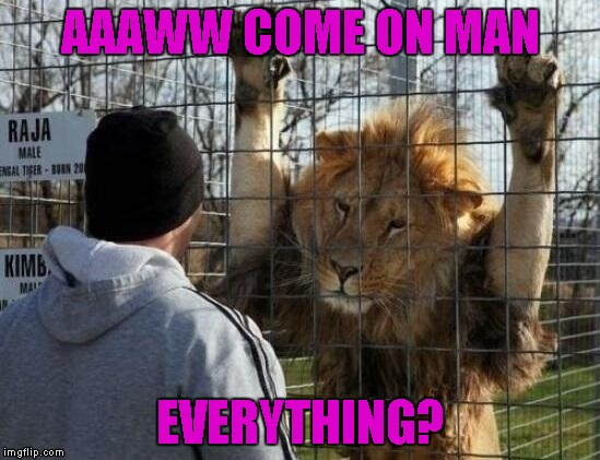 AAAWW COME ON MAN EVERYTHING? | made w/ Imgflip meme maker