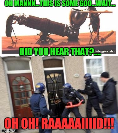 The War on Roaches on Roaches. | OH MANNN...THIS IS SOME GOO...WAIT... OH OH! RAAAAAIIIID!!! DID YOU HEAR THAT?.... | image tagged in memes,funny,roach,cockroaches | made w/ Imgflip meme maker