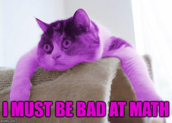 RayCat Stare | I MUST BE BAD AT MATH | image tagged in raycat stare | made w/ Imgflip meme maker