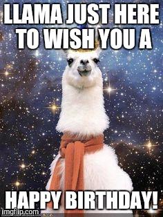 126ly3 happy birthday alpaca meme generator imgflip,Alpaca Meme Generator